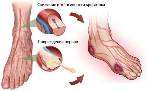 Расписание врачей в 8 поликлинике невского района